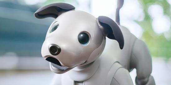 Aibo el nuevo perro robot de SonyIUSH
